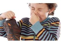 Si ta largoni erën e keqe të këpucave me gjëra shtëpiake